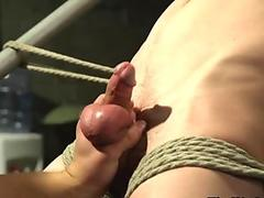 Cocksucking stud flogged while restrained